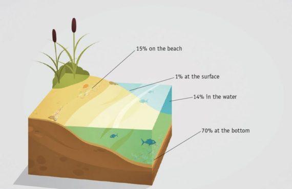 Guppyfriend-mikroplastfilter-vaskepose-SQOOP-outdoor-beach-1024×664
